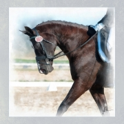 just-horsing-around
