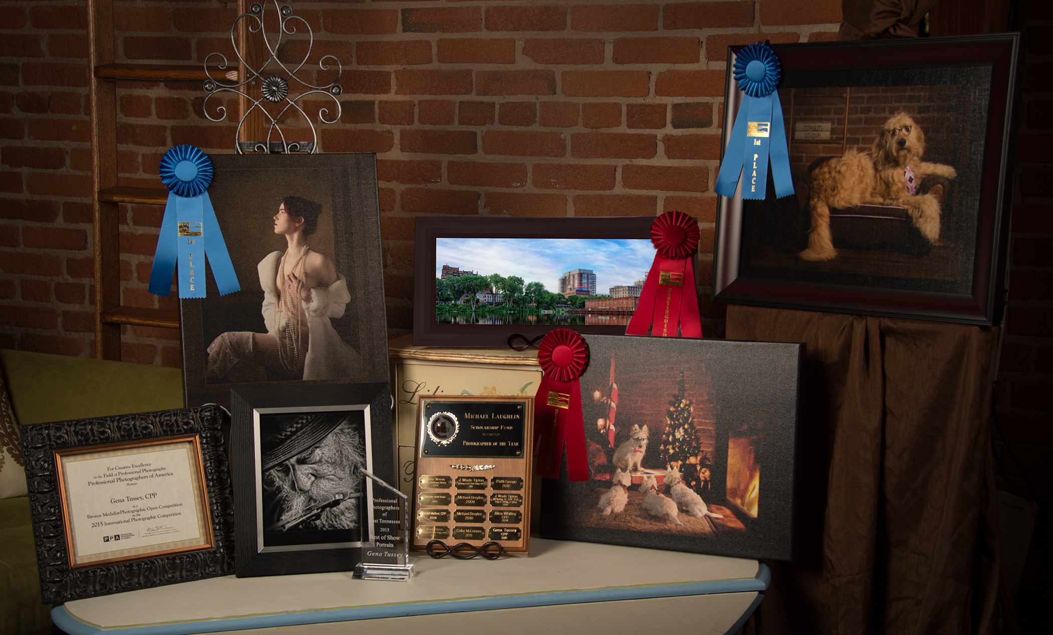 2015 Master of Photography PPA, 2015 Bronze Medallion, IPC, 2015 PPETN Photographer of the Year